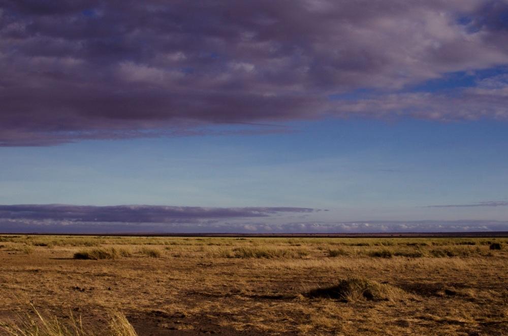 Amboseli Plains
