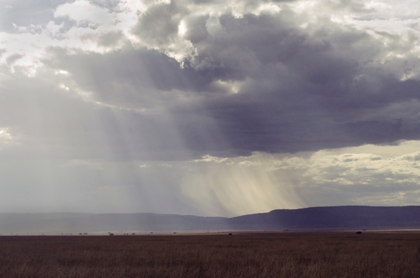 Rains Over Serengeti Plains